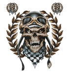 Decal Racing Skull, 1ks
