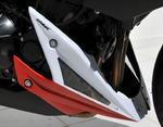 Ermax kryt motoru - Kawasaki Z1000 2010-2013