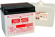 BS Battery 53030 (FA)